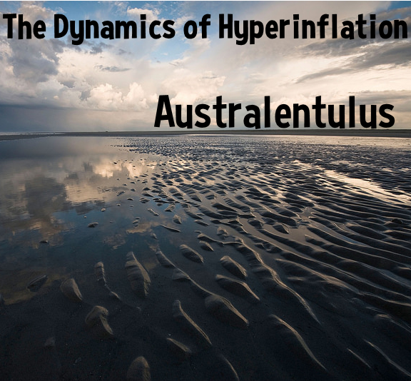 the dynamics of hyperinflation.png